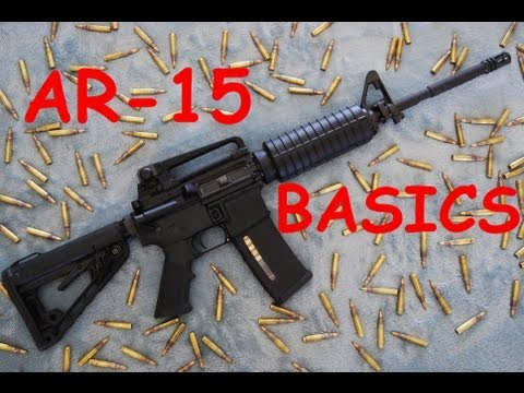 AR-15 Basics: Controls, Function, Disassembly, & Reassembly.