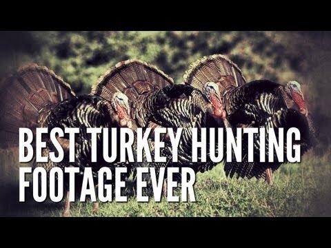 Best Turkey Hunting Footage Ever