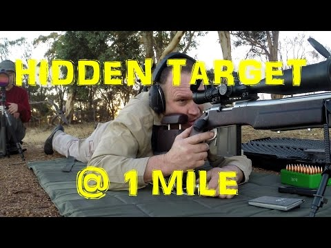 1 mile hidden target with a .308