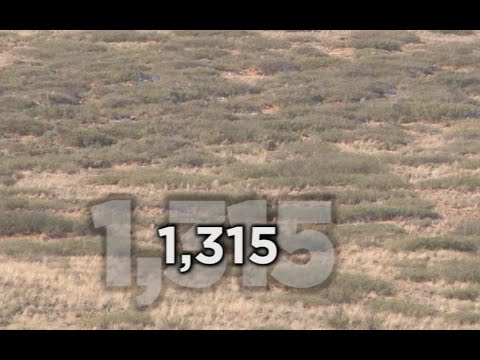 Long Range Hunting – 54 KILL SHOTS – Extreme Outer Limits TV