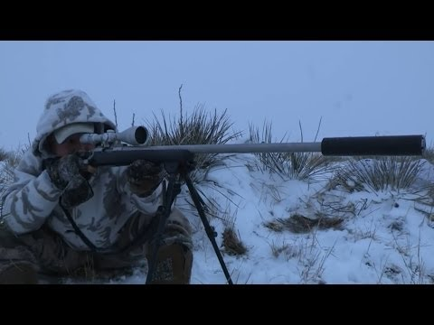 "Predator Hunting: SUPPRESSED® ""Triple Down"""