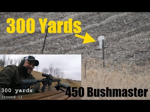 450 Bushmaster at 200 & 300 Yards