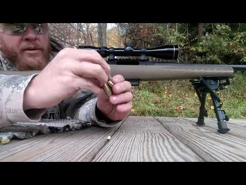 Review 450 Bushmaster handloads testing 200gr ftx and Hodgdon H110