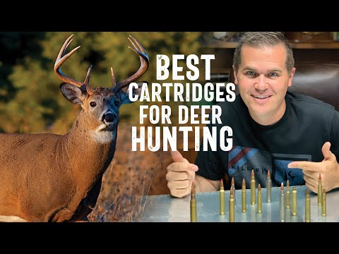 Best Calibers and Cartridges for Hunting Deer
