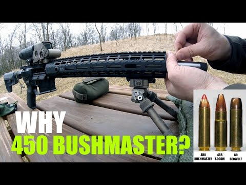 Why I chose 450 Bushmaster!